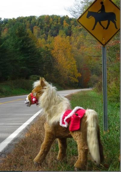 Pony Road